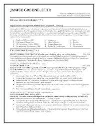 Resume Team Leader Responsibilities Resume 23 Luxury Security