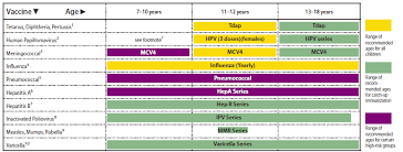 Immunization Age Chart Recommended Immunization Schedules For Persons Aged 0