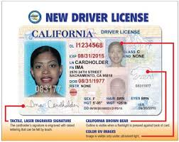 Your Driver's Road For Waiting Warrior Still License