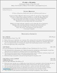 Sample Resume Objective Statements For High School Students Best Of