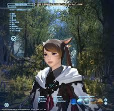 Aegis Shield 日記25のミコッテ追加髪型 Final Fantasy Xiv