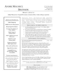 Travel Agent Resume Simple Travel Agent Resume Datainfo