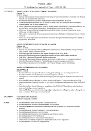 Assistant Maintenance Manager Resume Samples Velvet Jobs