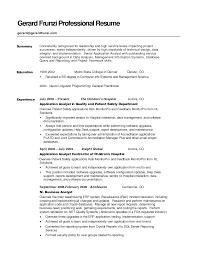 Resume Summary Examples - Obfuscata