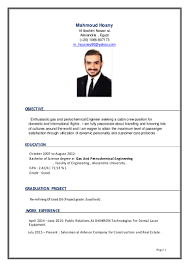 Career Objective For Resume For Fresher Cabin Crew My Marketing