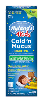 Hylands 4 Kids Cold N Mucus Nighttime Relief Liquid Natural Relief Of Chest Congestion Sleeplessness Runny Nose Sore Throat Sneezing Cough 4