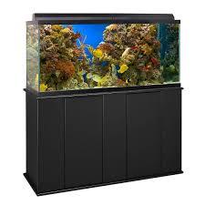 best aquarium stands for your fish