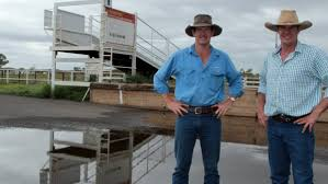 Cloncurry yards under new contract   Queensland Country Life ...