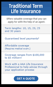 free term life insurance quotes