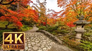 Japanese Garden Japanese Garden 4k Resolution 1 Hour Nature Sound For