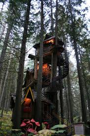 17 Best 1000 Ideas About Tree House Designs On Pinterest Tree Coolest Tree Houses