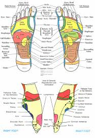 Reflexology Chart 31 Printable Foot Reflexology Charts Maps Template Lab