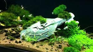 cool fish tank ornaments ideas stunning aquarium decoration