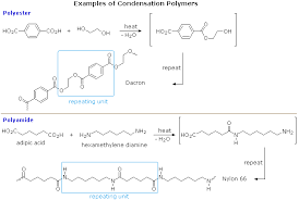 Monomer And Polymer Chart Polymers