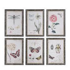 w herbarium prints framed wall art on wall art set of 6 with 3r studios 13 in h x 9 5 in w herbarium prints framed wall art