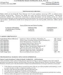 Resume Examples For College Magnificent College Instructor Resume Sample College Instructor Resume Sample