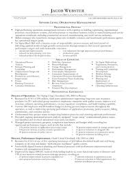 Executive Resume 100 Best Sample Executive Resume Templates WiseStep 48