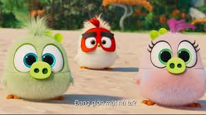 Video - ANGRY BIRDS 2
