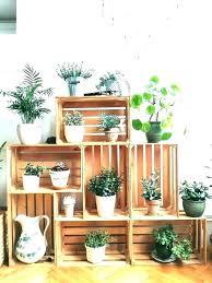 indoor garden shelves indoor garden shelves pleasurable inspiration indoor garden shelves garden shelving outdoor shelving ideas