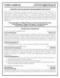 It Project Manager Resume Sample Website Copywriter Sample Resume