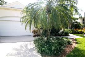 perfect location close to the town center the athletic club cleveland clinic royal palm blvd weston road and i 75