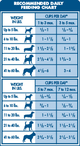 Puppy Feeding Chart Golden Retriever Golden Retriever Food Amount Goldenacresdogs Com
