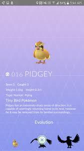 Pidgey from Pokemon Go