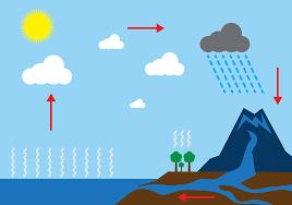 water life cycle diagram water printable water cycle water water cycle vector art 5020 s source