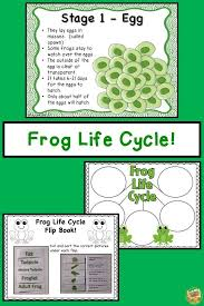 Frog Life Cycle Unit Lots Of Fun Activities For 1 3