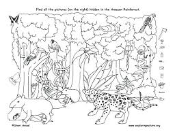 Animal Camouflage Coloring Pages Printable For Adults Kids Animals
