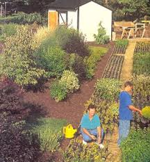 how to start an organic garden. How To Start A Backyard Nursery. Pam, Kevin And Mike McGroarty Tend The An Organic Garden