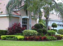 Innovative Trees Front Yard Landscaping Ideas Contemporary Shaded Front  Yard Landscaping Ideas With Palm Tree