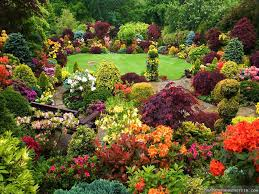 beautiful flower gardens photos