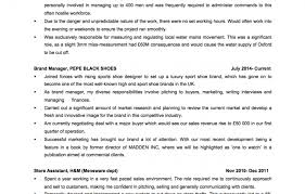 My Perfect Resume Review Famous Reviews On My Perfect Resume Website Images Entry Level 50
