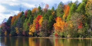 32 Beautiful Fall Pictures - Best Photos of Fall Foliage