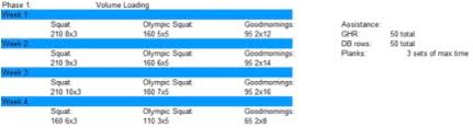 World Record Squat Training Juggernaut Training Systems