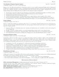 International Resume Examples International Marketing Director ...