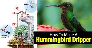 how to make a hummingbird dripper