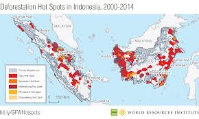 New Deforestation Hot Spots in the World's Largest Tropical Forests ...