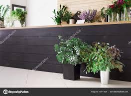 Modern Flower Shop Interior Design Pictures Flower Shop Interior Design Flower Shop Interior
