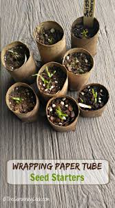 Biodegradable Paper With Flower Seeds Seed Starting Pots From Eco Friendly Cardboard Tubes
