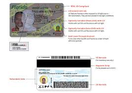 Driver A Florida Fox Cards 13 - Get Story Makeover Id Tampa Bay Licenses