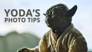 Use These 5 Tips From Yoda To Improve Your Photography Diy Photography