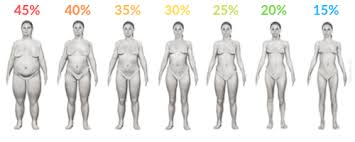 Body Chart Body Fat Percentage Charts The Real Deal Guide