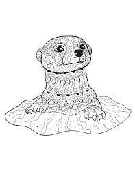 Drawn Otter Mandala Free Clipart On Dumielauxepicesnet