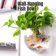 See more ideas about plants, wall mounted planters, hanging plants. Easy Bathroom Decor With A 15 Wall Hanging Fish Bowl