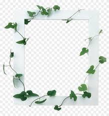 Frames For Photoshop Mq White Vines Frame Frames Border Borders Border Frames