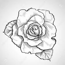 пин от пользователя белка на доске тату черепа с цветами розы и