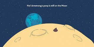Armstrong Cove Base Color Chart Neil Armstrongs Poop Is Still On The Moon Factourism
