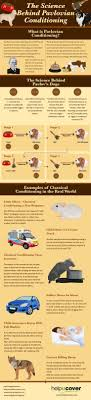 best ideas about schools of psychology the science behind pavlovian conditioning infographic